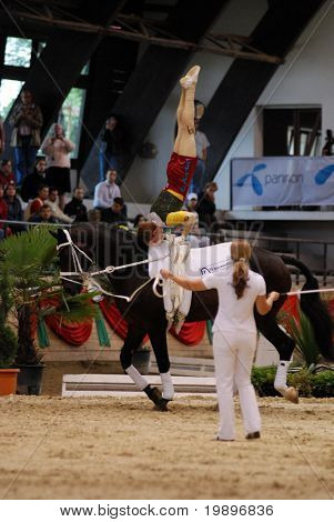 KAPOSVAR, HUNGARY - AUGUST 12: Patric Looser (SUI) in action at the Vaulting World Championship Final on August 12, 2007 in Kaposvar, Hungary.