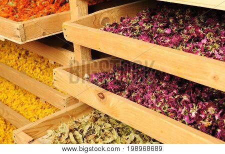 shelfs with dried flowers