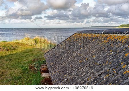 Yellow moss on the slate roof of the fisherman's house on the coast of the Baltic Sea of Hiiumaa Island...