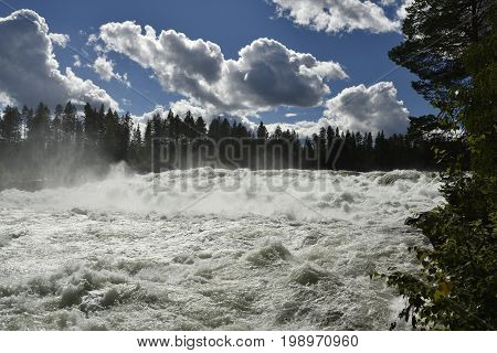 The rapid (Storforsen) in the river (Piteälven) with blue sky and clouds picture from the North of Sweden