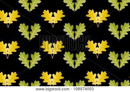 Oak leaf on black background - vector pattern , Yellow and green oak leaves