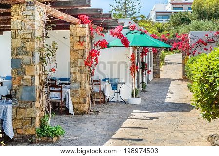 Greek café on a picturesque street on a sunny summer day the island of Crete