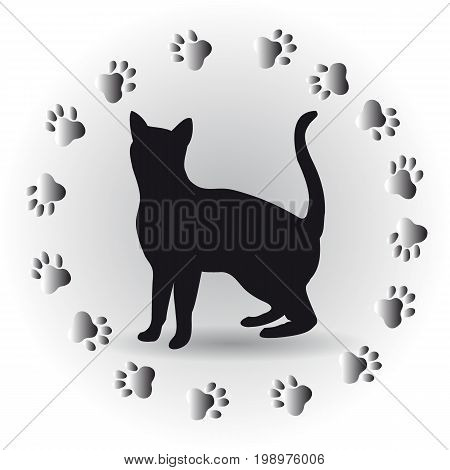 Cat tracks. Vector illustration for your drain