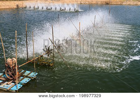Surface aerator for water treatment in shrimp farm
