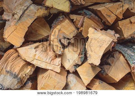Folded sawn trunks of trees with bark, firewood.
