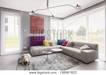Window Blinds, Couch And Artwork