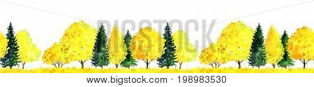 seamless pattern, watercolor autumn landscape with deciduous trees, pines, firs and grass, abstract nature background, forest template, yellow and red foliage and plants, hand drawn illustration