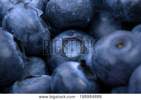 Close-up picture of a lot of natural and organic blueberries used as a background. Summer bright blue berries full of nutritious vitamins. Sweet and organic bilberries for healthy diets.