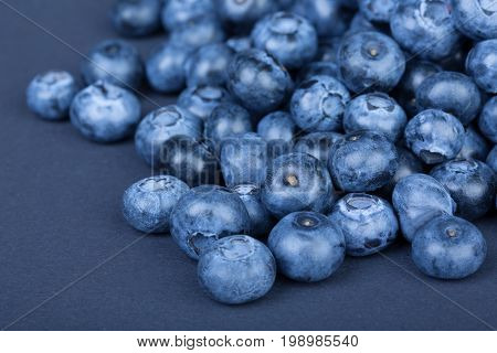 Close-up picture of a pile fresh and natural blueberries on a dark blue background. Summer sweet berries full of nutritious vitamins. Organic bilberries for vegan healthy diets.