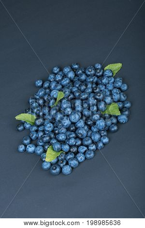 Close-up picture of a pile natural blueberries with fresh mint leaves on a dark blue background. Summer sweet berries full of nutritious vitamins. Organic bilberries for vegan healthy diets.