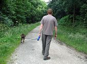A man walking a boxer dog down a country lane poster