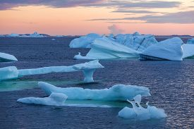 icebergs in quiet bay at sunset; Fogo Island, Newfoundland, Canada
