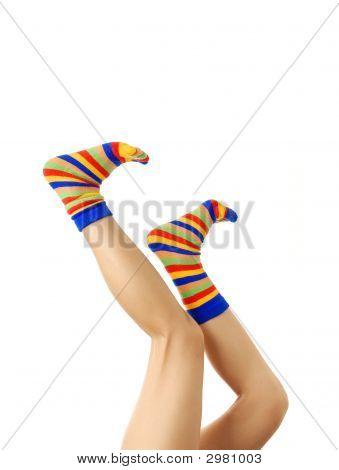 Legs In Zebrine Socks