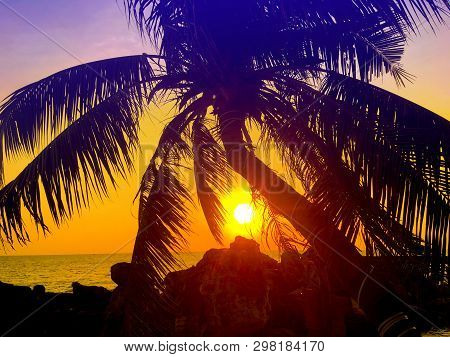 Palm Tree Silhouette At Sunset Sky On Tropical Beach. Bright Sun Above The Sea. Summer Vacation And