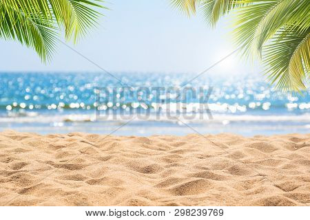 Abstract Seascape With Palm Tree, Tropical Beach Background. Blur Bokeh Light Of Calm Sea And Sky. S