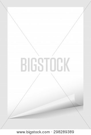 White A4 Paper Blank Curl Corner Template Isolated On Grey Background, Sticker Sheet Of Paper Curl W