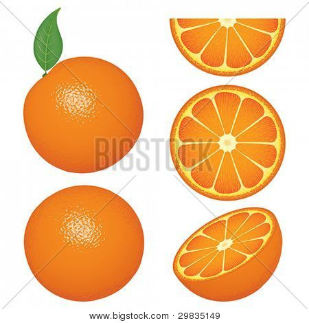 Isolated orange fruits and slices