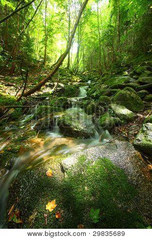 Headwaters Of The Chikumagawa River