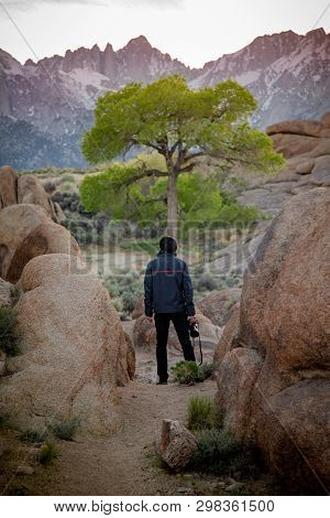 Asian Man Tourist And Photogrpher Holding Camera Looking At Lone Tree And Mount Whitney In Alabama H