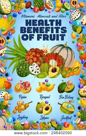 Vitamins In Exotic Tropical Fruits Harvest, Healthy Organic Food. Vector Multivitamins And Minerals