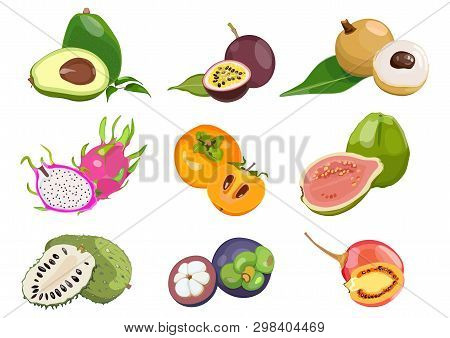 Set Of Colored, With Juicy Exotic Fruits On White Background. Vector Illustration