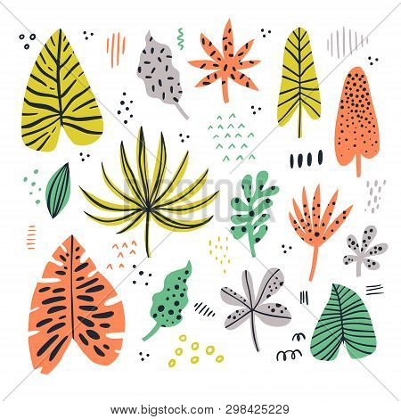 Exotic Leaves Hand Drawn Flat Illustrations Set. Jungle, Rainforest Foliage Sketch Cliparts Collecti
