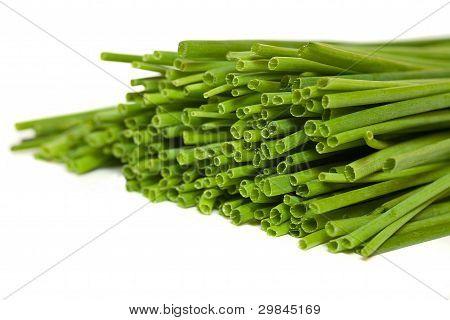 Fresh Green Chives