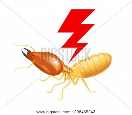 Termite With Thunder Symbol Red Isolated On White Background, Logo Insects Termite And Thunder Flash
