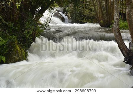 Water Movement;  Flood Of The Mountain Stream,