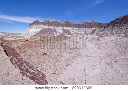 Petrified Wood In The Badlands Escarpments In Petrified Forest National Park In Arizona