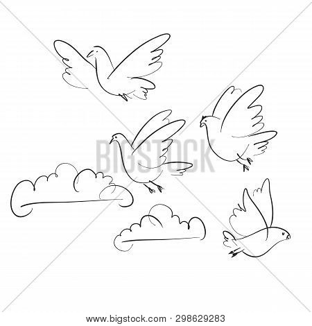 Birds And Clouds Vector Hand Drawn Illustration. Peace Symbol. Sketch Pigeons Flock Flying In Sky Se