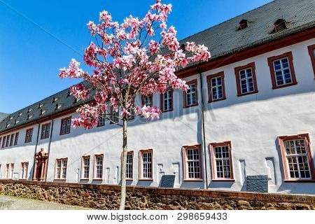 Kloster Eberbach, Near Eltville Am Rhein - Mystic Heritage Of The Cistercian Monks In Rheingau, Hess