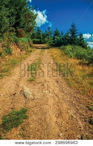 Dirt Road Passing Through Hilly Terrain Covered By Bushes And Trees At The Highlands Of Serra Da Est