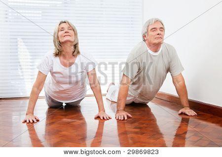 Two senior people doing yoga exercise Bhujangasana in gym