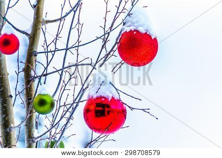 Christmas Decorations, Christmas, Ornament, Snow, Decoration, Ball, Winter, Art, Background, Bark, B
