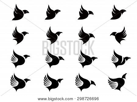Vector Collection Of Flying Bird Silhouettes Design Template