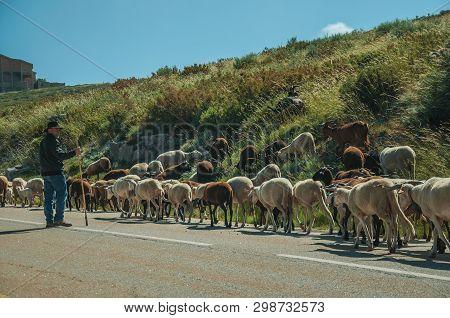 Serra Da Estrela, Portugal, July 14, 2018. Shepherd With Flock Of Goats Grazing Beside Road, At The