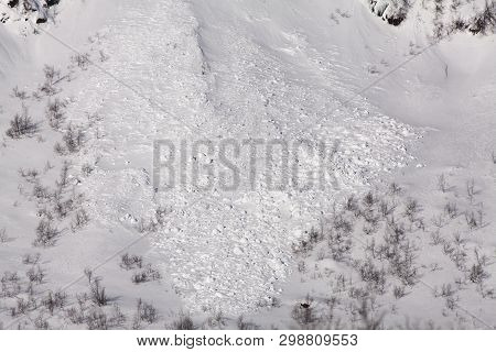 Trace, Blocks From A Small Avalanche On A Hillside. Snow Sliding Downhill Into Some Small Trees.