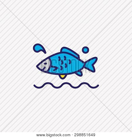 Vector Illustration Of Aquatic Icon Colored Line. Beautiful Naval Element Also Can Be Used As Carp F
