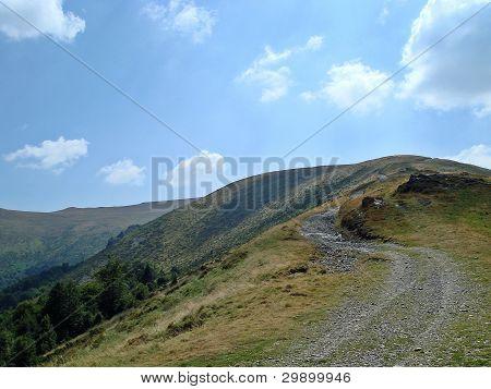 Road In Retezat, Carpathians