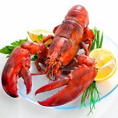 lobster on dish with parsley and lemon slices poster