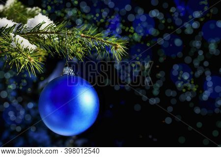 Forest Christmas Tree Branch With Blue Ornament. Christmas Tree And Christmas Decoration. Christmas