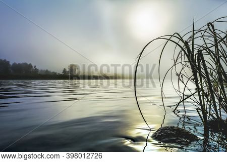 River Landscape With Dawn Mist And Morning Dew Selective Focus. Selective Focus. Summer Idyllic Beau