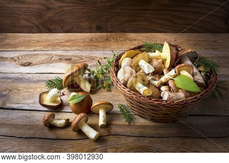 Wild Forest Mushrooms In Basket  On The Rustic Wooden . Fresh Raw Mushrooms In The Basket.