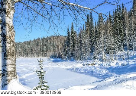Winter Landscape On Frozen Lake. Cold Day In The Winter Forest