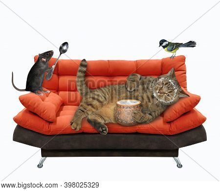 A Beige Lazy Cat Is Lying On A Red Divan And Eating Sour Cream From A Clay Pot. White Background. Is