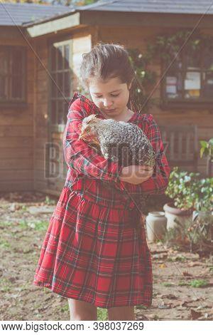 Little Girl In Red Tartan Dress Holding Cream Crested Legbar Cockerel