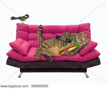 A Beige Lazy Cat With A Tv Remote Control Is Lying On A Pink Divan And Eating A Hot Dog. White Backg