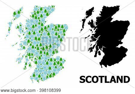 Vector Mosaic Map Of Scotland Combined For New Year, Christmas, And Winter. Mosaic Map Of Scotland I