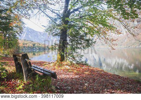 Bench Near Picturesque Lake Bohinj In The Triglav National Park In Slovenia. Autumn Landscape